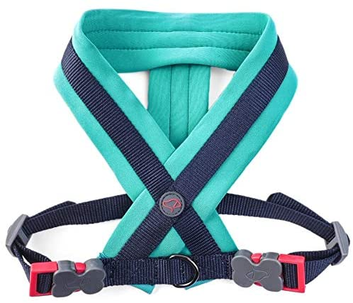 ZOON Uber-Activ Soft Padded No Pull Dog Harness | Sizes S-XL