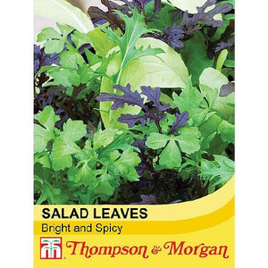 Salad Leaves Bright and Spicy