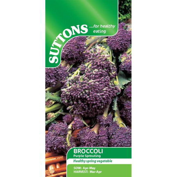 Suttons Broccoli Purple Sprouting