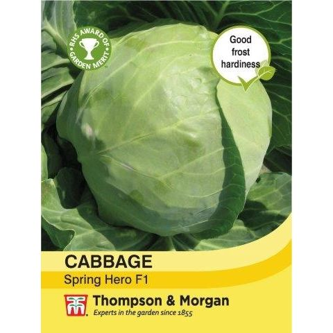 Cabbage Spring Hero F1