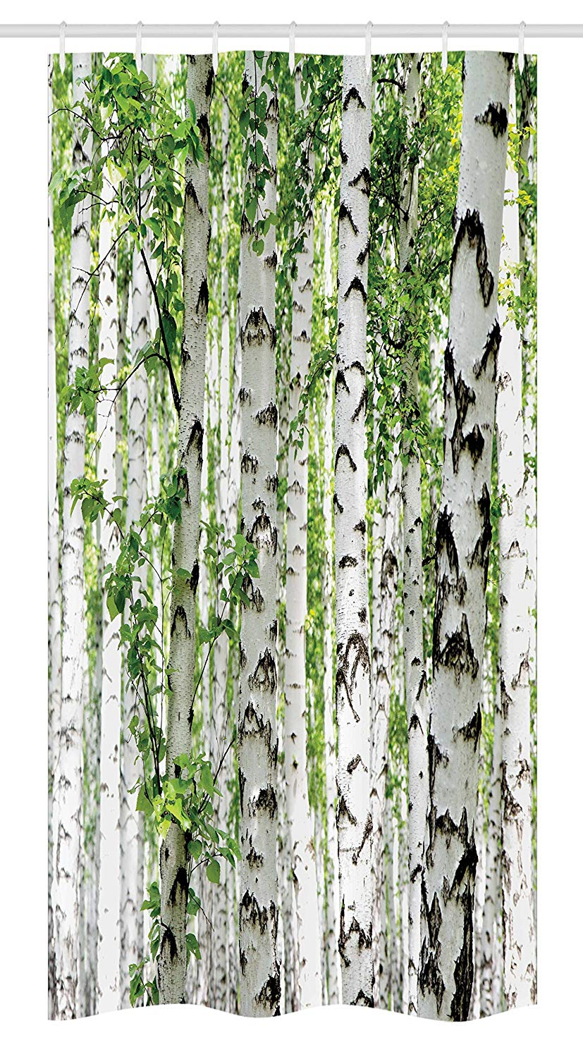 Ambesonne Woodland Stall Shower Curtain, Birch Trees in The Forest Summertime Wildlife Nature Outdoors Themed Picture, Fabric Bathroom Decor Set with Hooks, 36