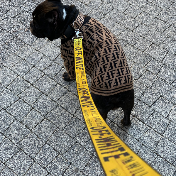 off white dog leash