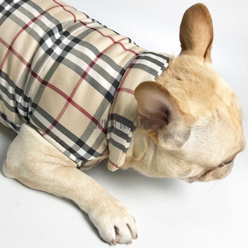burberry dog jacket