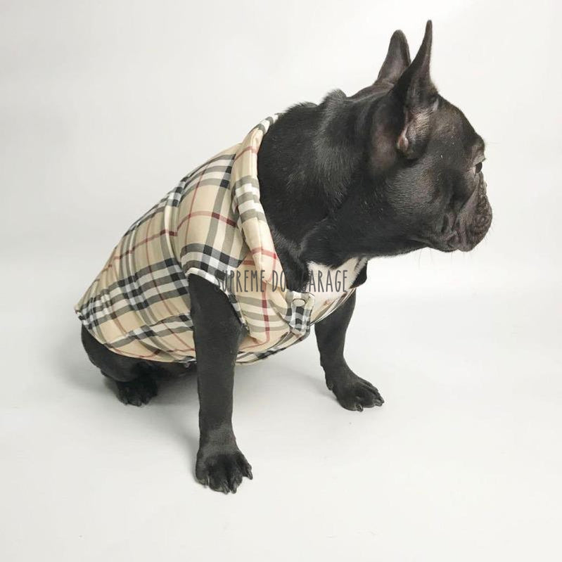 burberry dog vest