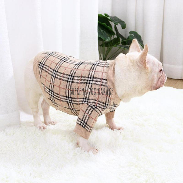 burberry dog clothing