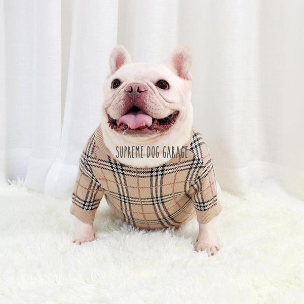 designer dog clothes burberry
