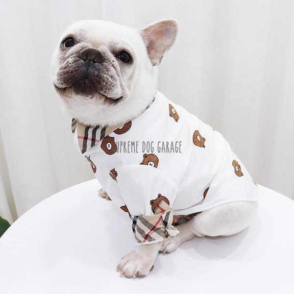 moschino clothes for dogs
