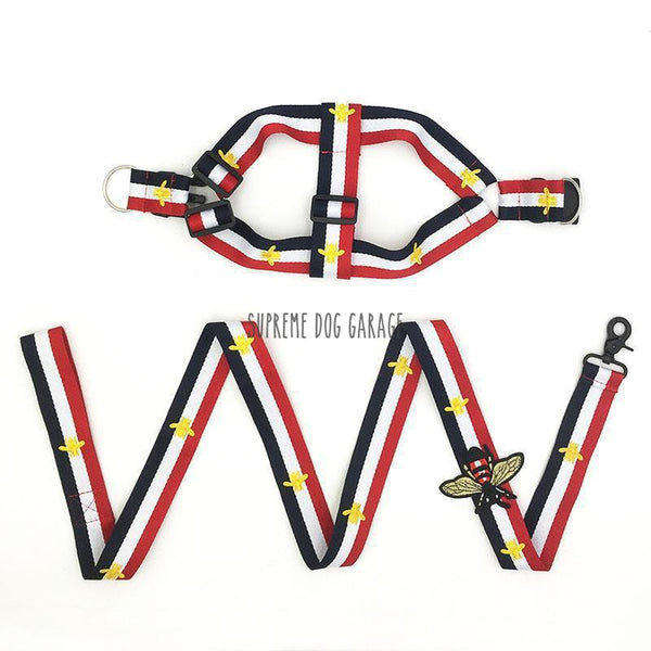 fashion dog harness leash set gucci