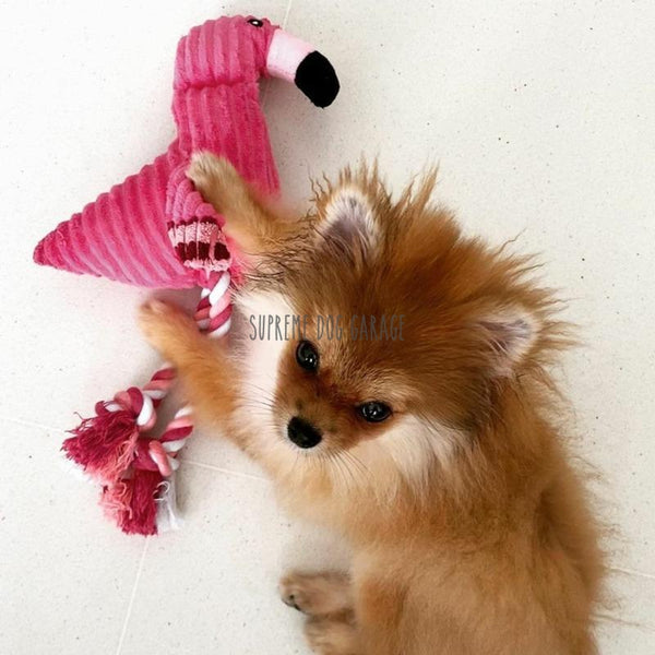 flamingo dog toy