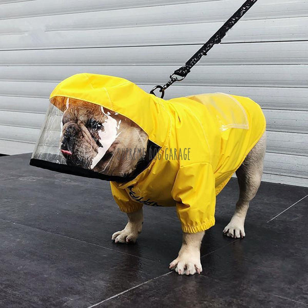 raincoats for dogs