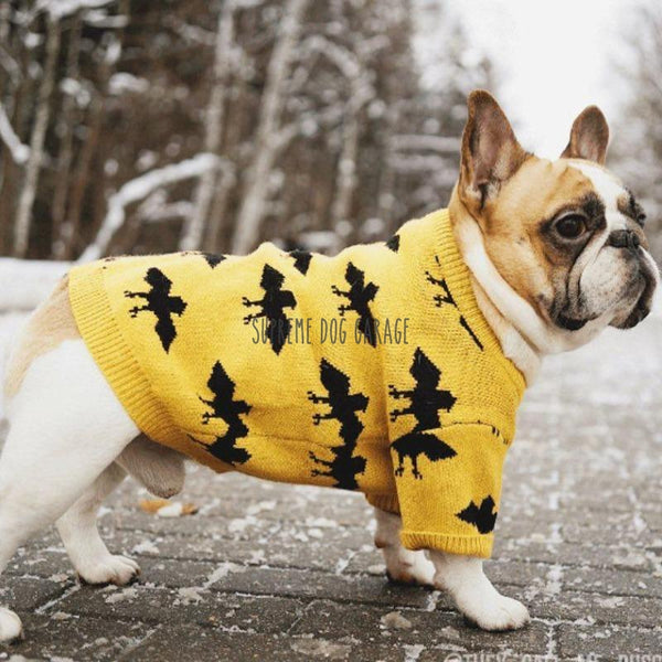 designer dog sweaters
