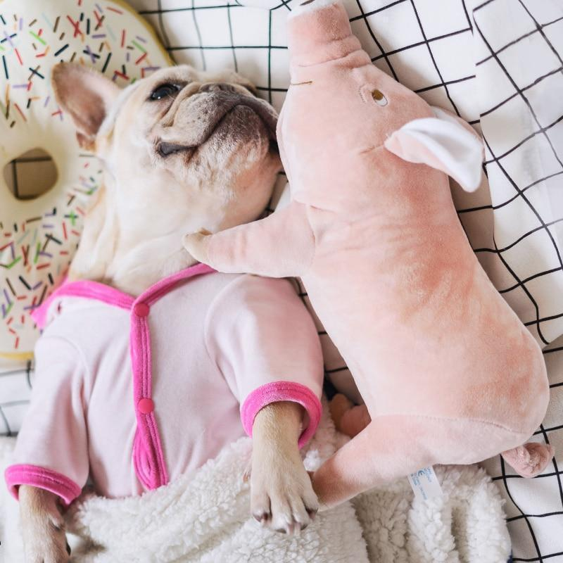 piggy dog toy