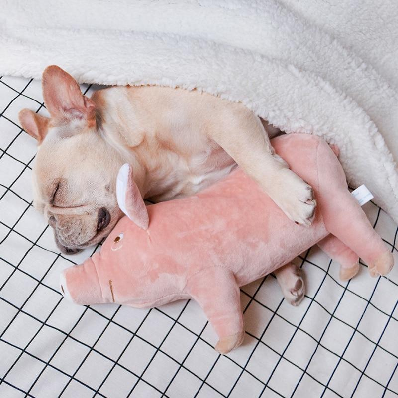 piggy toy for dogs