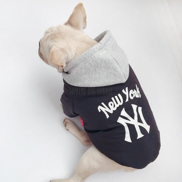 dog clothing nyc