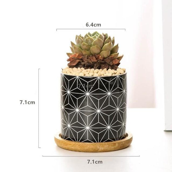 Rory - Round Geometric Pattern Flower Pot