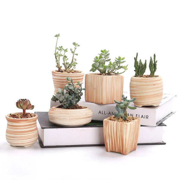 Set of 6 Ceramic Wooden Pattern Flower Planter