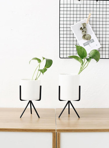 3 Set Ceramic Flower Planters with Modern Stand