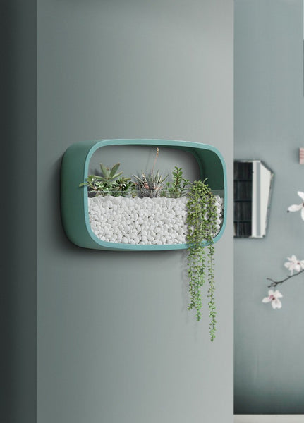 Nova - Rounded Modern Wall Planters