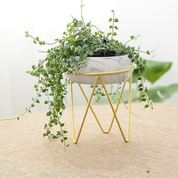 Odalys - Modern Iron Desktop Planter