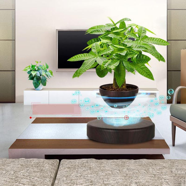 Kofi - Levitating Bamboo Planter