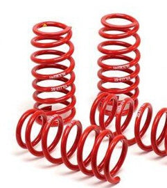 H&R - Race Lowering Springs