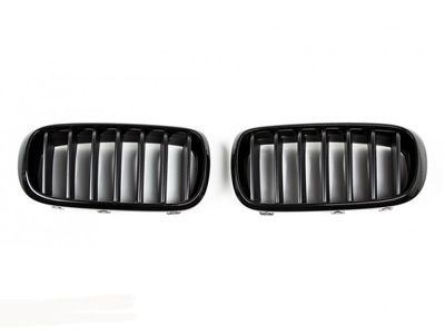 iND - Painted Kidney Grilles - BMW F15 X5
