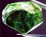 Tourmaline- Chrome - 33.64 cts - Ref. OAB/24- - THIS STONE IS 'ON HOLD'