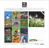 The Wildlife Trusts 2017 Calendar