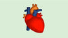 February is American Heart Month: Heart Disease Awareness and Heart Health Tips