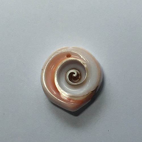 White and Pink Horizontal Seashell Slice Pendant, 26 x 7 mm
