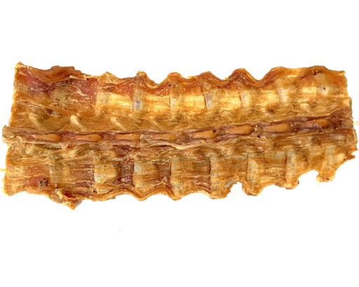 Crocodile Back Bone, Spine, Pet Treats, Australia, All Natural, snax.pet