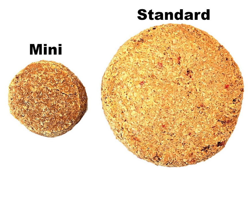 Oven Baked cheese and bacon dog biscuits. A size comparison of the standard and mini dog treat biscuits. Standard diameter is 70mm, while the mini is 35mm. snax.pet