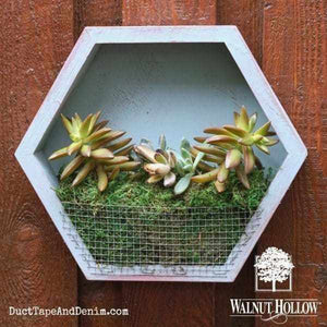 Modern Contemporary Diy Succulent Planter