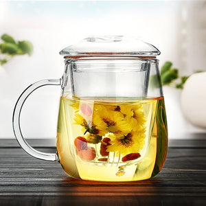 Zen Room Borosilicate Glass Tea Cup with Infuser and Lid/Portable Glass Tea Pot and Tea Maker/ Heat Resistant and Dishwasher Safe (16oz Single Glass)