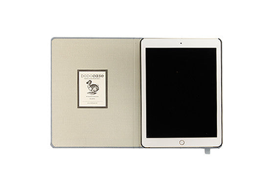 iPad Air 2 Solids