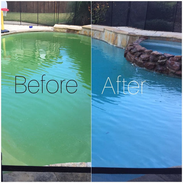 Six Easy Steps To Remove Algae From Your Pool