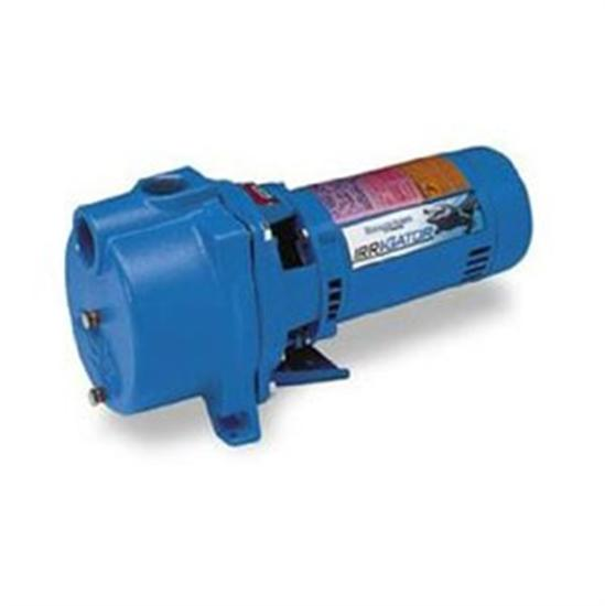 Goulds 2 HP 1 Phase 230V centrifugal Self-Priming Pump-Aqua Supercenter Outlet - Discount Swimming Pool Supplies