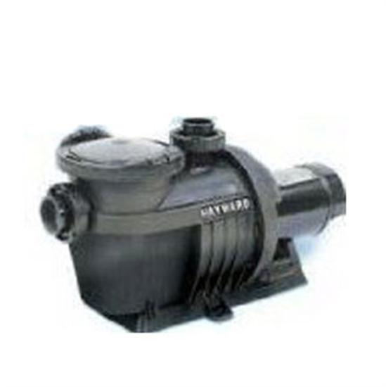 Hayward NorthStar 2HP 2-Speed Energy Efficient Pool Pump-Aqua Supercenter Outlet - Discount Swimming Pool Supplies
