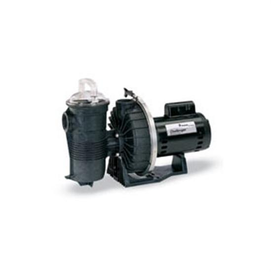 Pentair Challenger 2HP 2-Speed Up-Rated Pool Pump-Aqua Supercenter Outlet - Discount Swimming Pool Supplies