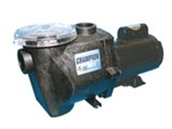 Waterway Champion In-Ground Pool Pump 2 HP - 2 Speed-Aqua Supercenter Outlet - Discount Swimming Pool Supplies