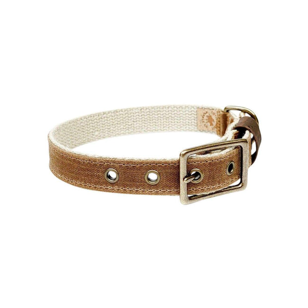 Little Donkey Supply Co. Collars & Harnesses Earth Dog Collar Kaufmann Mercantile