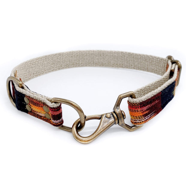 Little Donkey Supply Co. Collars + Harnesses Harvest Dog Collar Kaufmann Mercantile