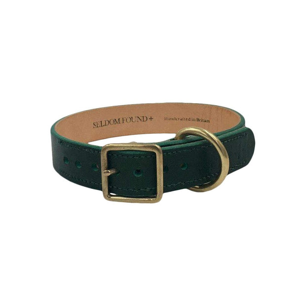 Seldom Found Collars + Harnesses Puppy / Small Breed Artisan Dog Collar in Forest Green Kaufmann Mercantile