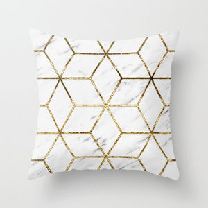 Geometry Class Throw Pillow Covers, 18x18