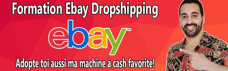 Formation Ebay dropshipping