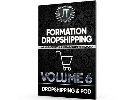 formation dropshipping et pod