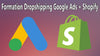 Formation Google Ads Shopify Dropshipping