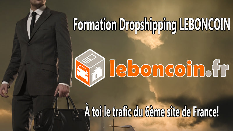 Formation dropshipping leboncoin