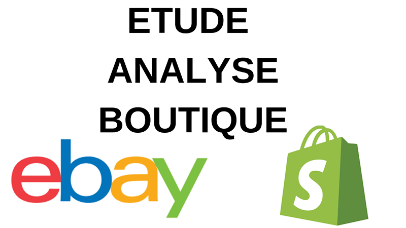 Audit boutique eBay et Shopify