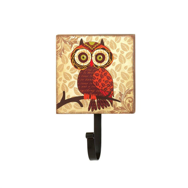Big Eyes Owl Wall Hook